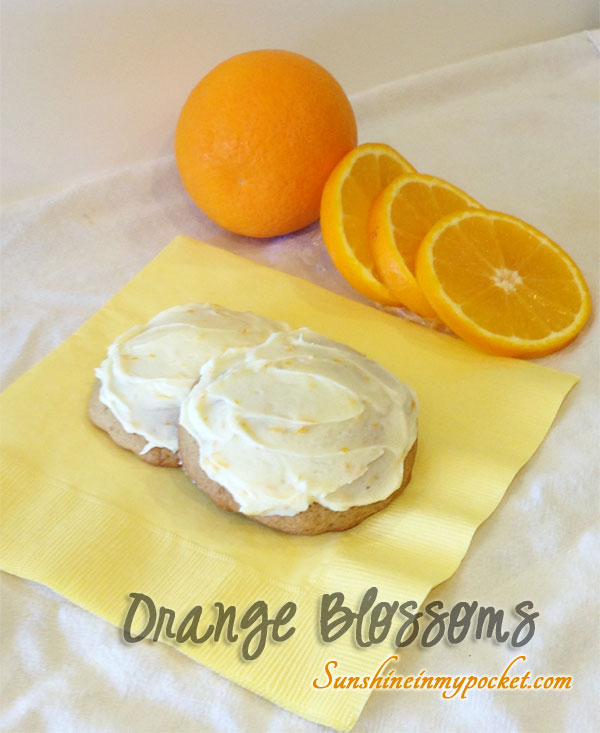 two-cookies-with-orange-slices