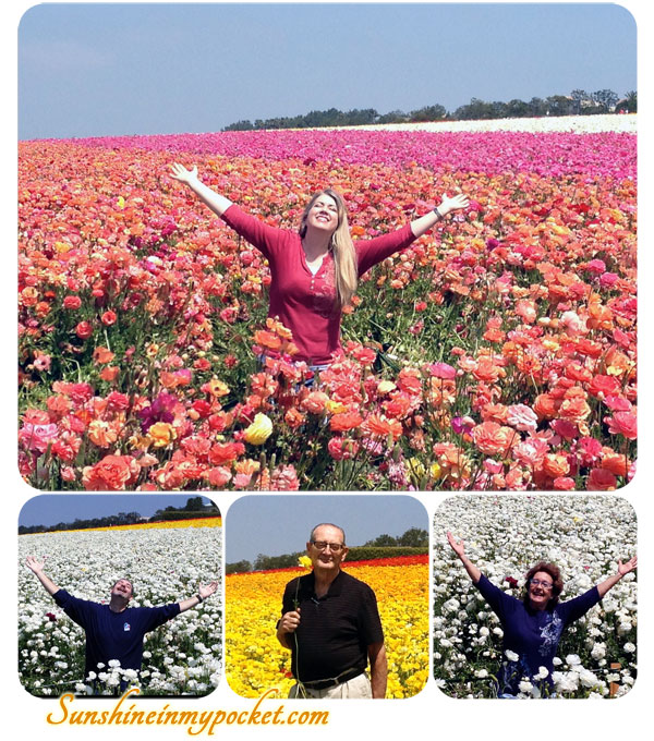 arms-up-in-flowers-4-picts