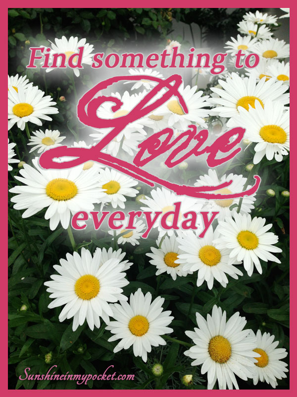 7-13-find-something-to-love-every-day
