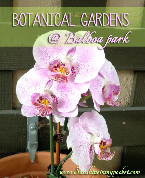 botanical-gardens-at-balboa-park