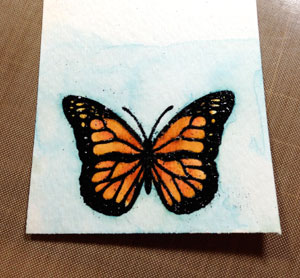 butterfly-practice