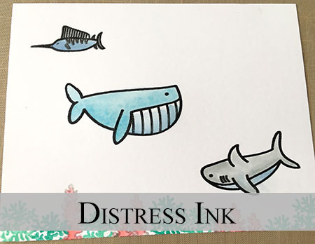 shark-distress-ink